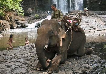Отдых в Камбодже