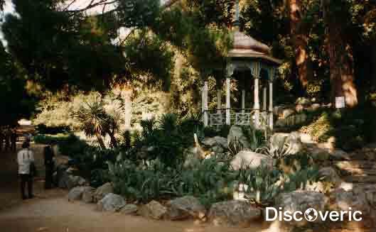 Никитский ботанический сад с фото, описанием, картой и ...: http://discoveric.ru/mesta/ukraina/krym/nikitskij-botanicheskij-sad