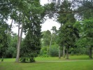 Ботанический сад города Паланга, Паланга, Литва
