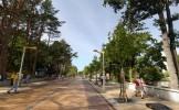 Улица Басанавичюса, Паланга, Литва