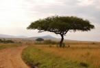 Национальные парки и заповедники Кении, Кения